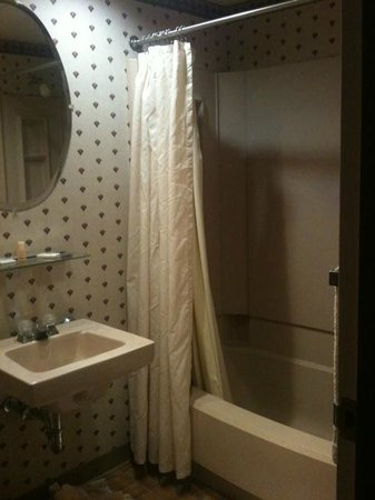 Mountain Laurel Resort & Spa :                                     Bathroom 2