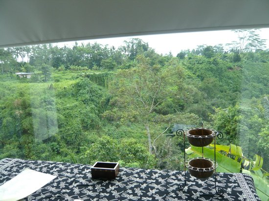 Amori Villas:                   View from the writing desk window