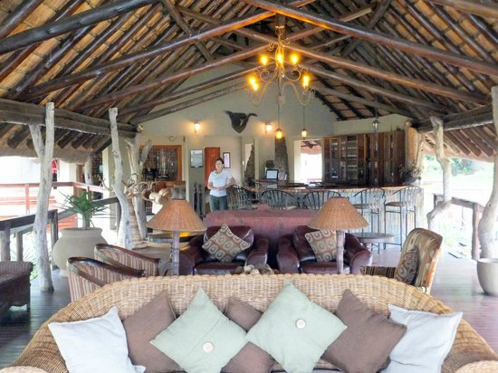 Arathusa Safari Lodge:                   common area and bar