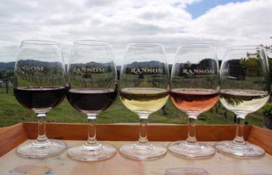 Ransom Wines Foto