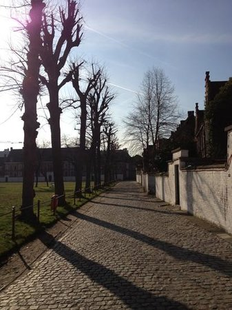 Our Lady Ter Hoyen Beguinage:                   beautiful day in february.