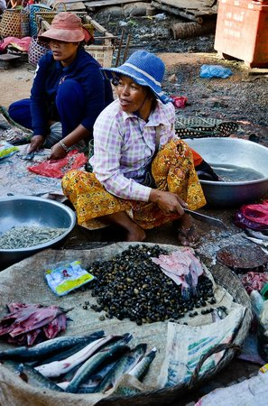 Kompong Phluk:                   Local fresh food market-preparing seafood