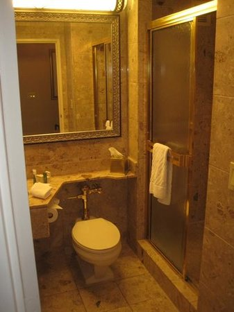 Hilton Chicago:                   marble bathroom, stall shower