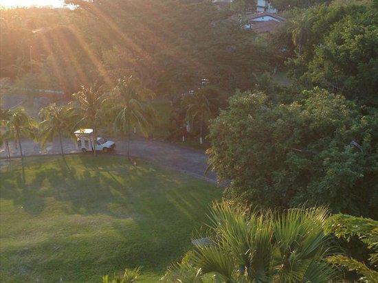 Villas Sol Hotel & Beach Resort:                                     Shuttle