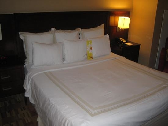 Atlanta Airport Marriott:                   Room 350, king bed
