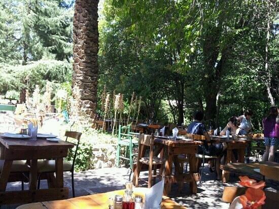 Hosteria Millahue :                   terraza...al amuerzo