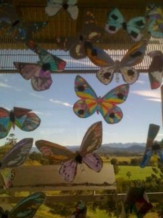 Tweed Regional Gallery & Margaret Olley Art Centre:                   Colouring butterflies - kids activity from an earlier exhibition