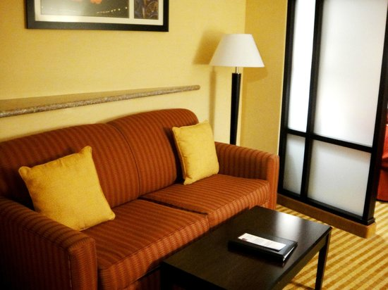 Comfort Suites:                                     Sofa area