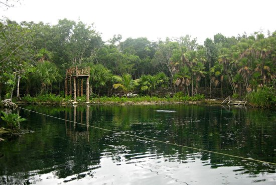 Cenote Crystal:                   Cenote Cristal