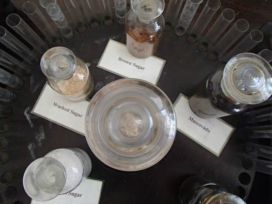 Negros Museum:                   different types of sugar
