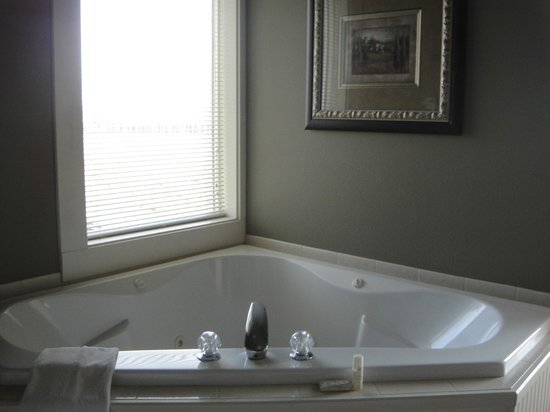 Birchfield Manor Country Inn :                   Whirlpool tub in the Anne room. Loved it!