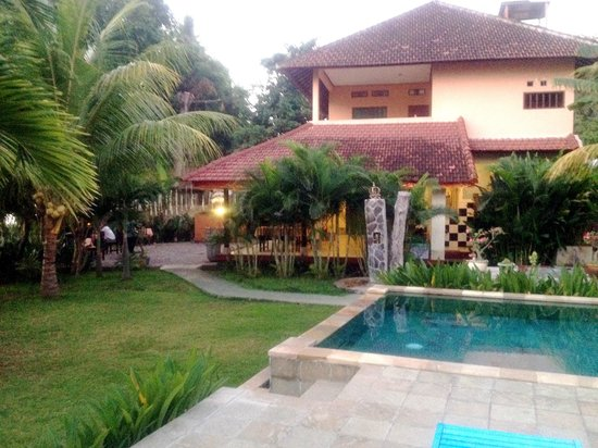 1000 Dream Bungalow - Lovina:                                     Restaurant and Pool