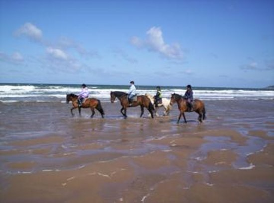 Mullacott Equestrian Centre: Walking through the sea