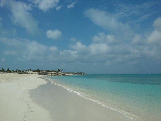 Caicos Dream Tours:                   Remote beach