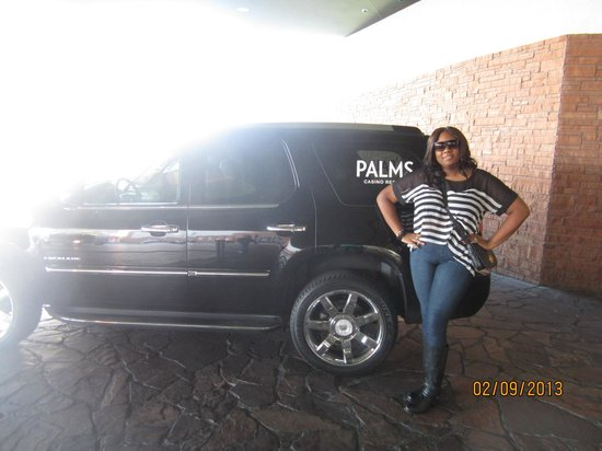 Palms Casino Resort:                   The PALMS~ FEBRUARY 2013