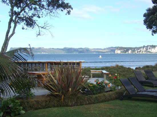 Beachfront Resort:                   View from our room showing macrocarpa tablevoverlooking the bay