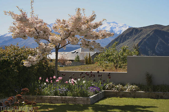 Tiritiri Lodge: Spring in the garden