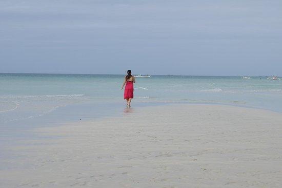 Budyong Beach Resort:                   beach