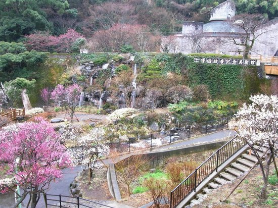 Atami Plum Garden:                   熱海梅園3