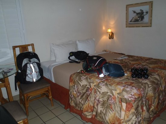 Days Inn Maui Oceanfront:                   small room but comfy bed