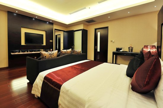 Dara Airport Hotel: Room
