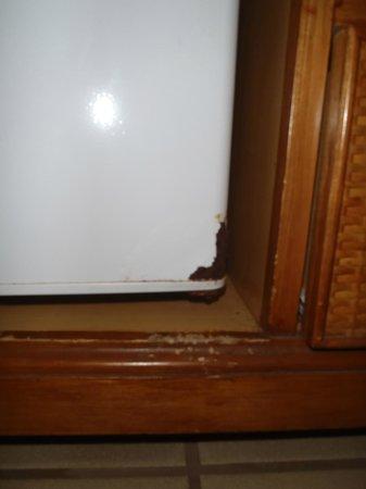 دايز إن ماوي أوشن فرونت:                   fridge rusting                 