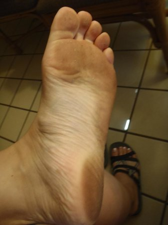 Days Inn Maui Oceanfront:                   this is how dirty my feet were after showering and walking back and forth a fe