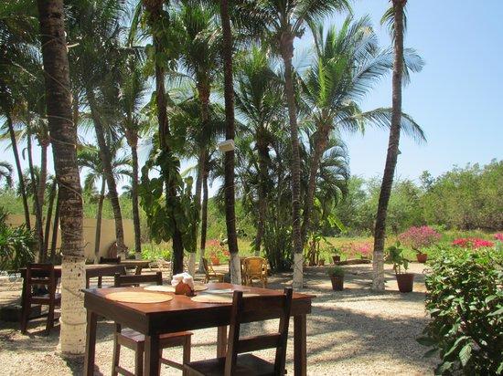 Hotel La Laguna del cocodrilo:                   Restaurantbereich
