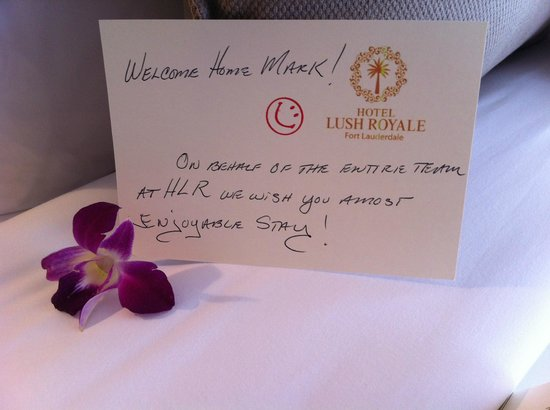 Hotel Lush Royale:                   They make you feel at home