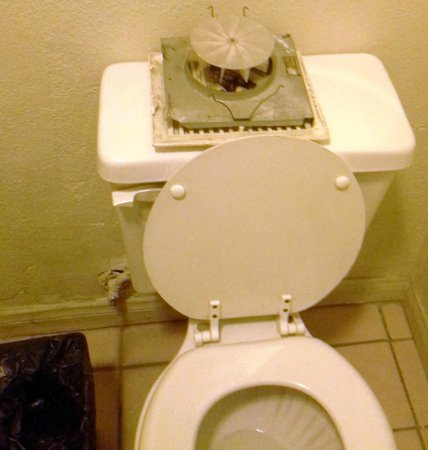 Sunshine Motel:                   How our toilet looked throughout our stay.  Didn't want to handle the fallen f
