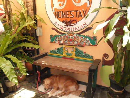 La Javanaise Home Stay:                   l'entrée de la Javanaise Homestay