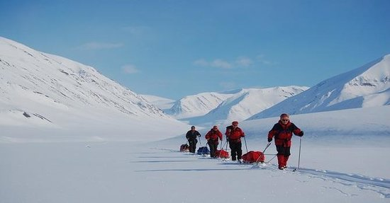 Svalbard Wildlife Expeditions: summerski in artic wilderness