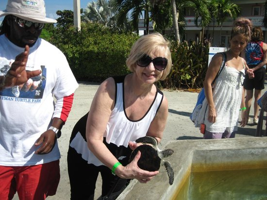 Sunshine Suites Resort:                   Turtle farm-holding a little one. One big one was 500 lbs.