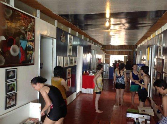 Scuba Jeff Guest House:                   Scuba Jeff's Hallway and Gallery                 