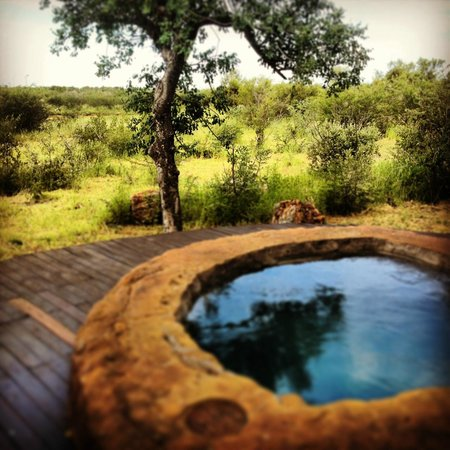 Rhulani Safari Lodge:                   View from Deck