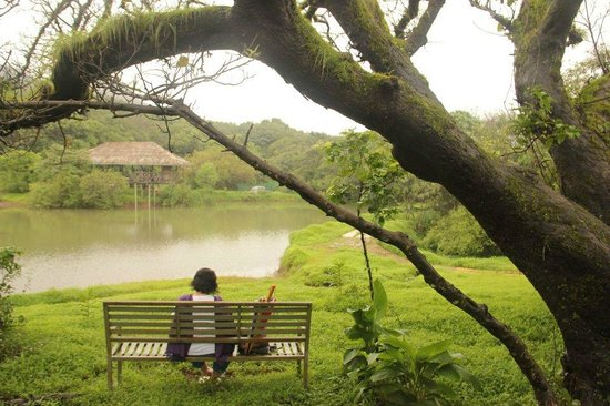 The Machan:                   by the lake...