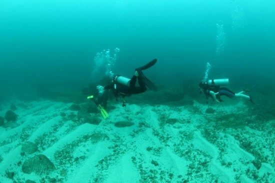 Weligama Bay Dive Center: Waligama Bay Diving Center