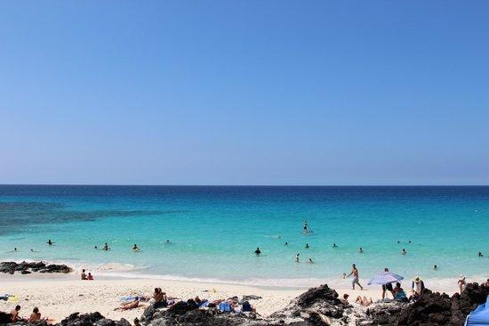 Manini'owali Beach (Kua Bay):                   キレイっス!