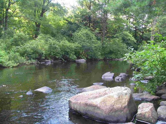 Maplewood B&B: The Farmington River in our back yard
