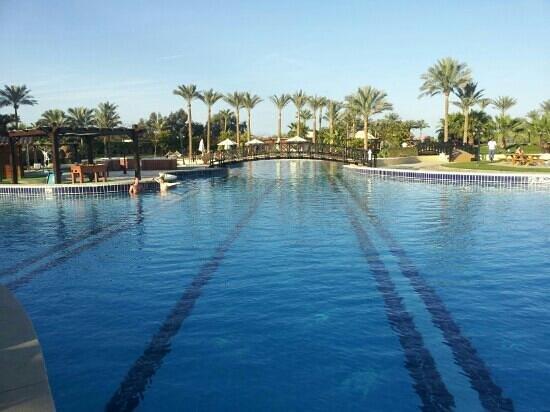 Steigenberger Al Dau Beach Hotel:                                     wunderschöne poollandschaft