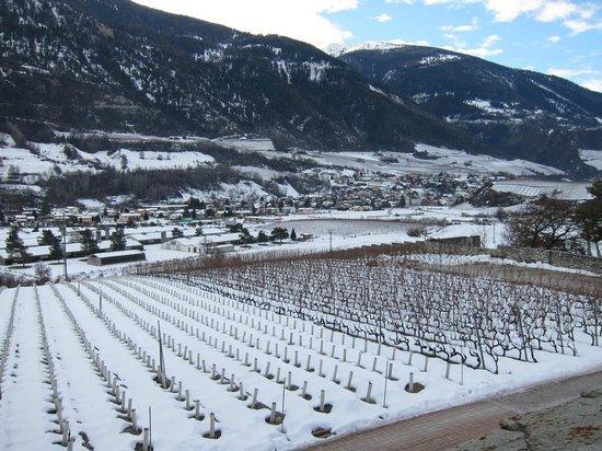 Colline de Daval:                   Vineyard + castle = perfect