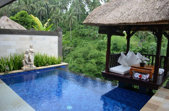 Viceroy Bali:                   Villa's pool and Bale