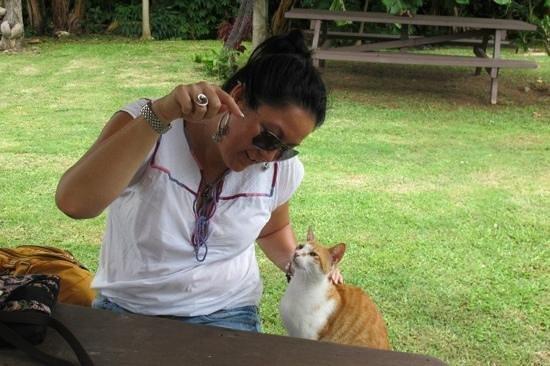 Apii Cafe:                                     resident kitty