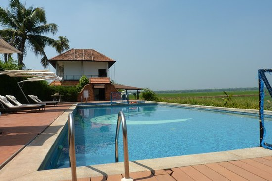 Citrus Retreats Alleppey:                   Swimming Pool