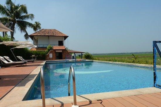سايترس ريتريتس أليبي:                   Swimming Pool                 