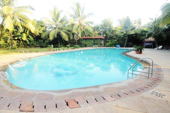 Sai Inn Resort Prices Reviews Alibaug India Tripadvisor
