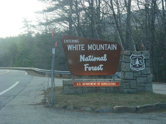 White Mountain National Forest:                                     Welcome to White Mountain NF !