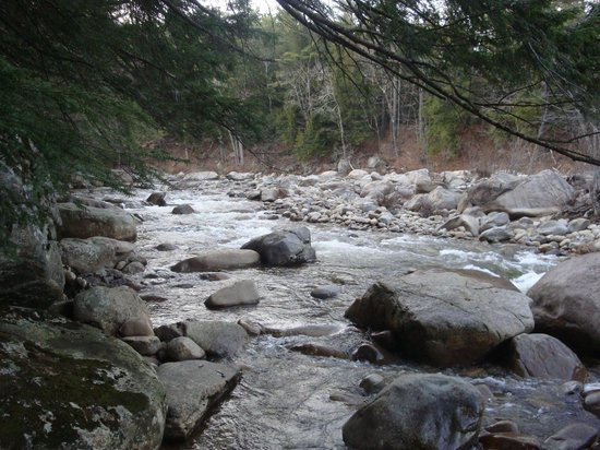 White Mountain National Forest:                                     Rapids alongside the drive.