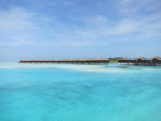 Anantara Dhigu Maldives Resort:                   view from the beach