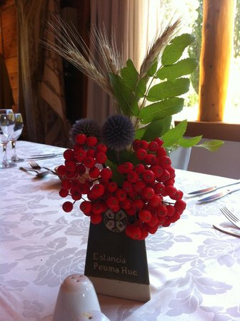 Estancia Peuma Hue:                   Beautiful flower arrangements, grown on site